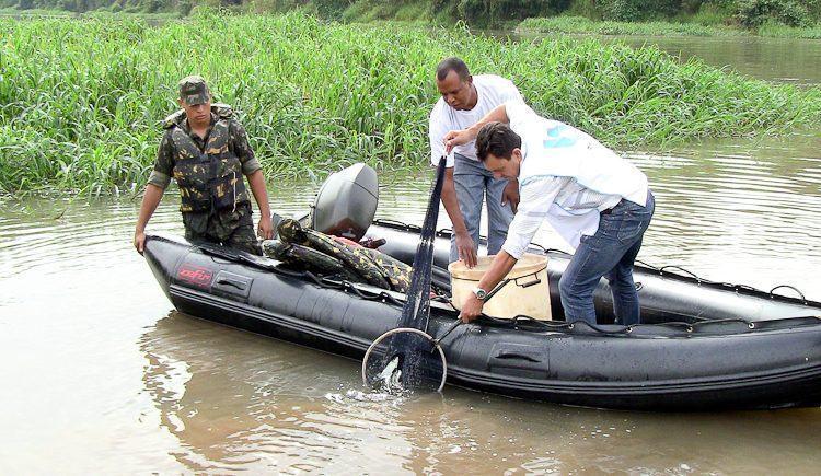 Peixes foram soltos no Rio Paraíba do Sul no trecho de Pindamonhangaba. (Foto: PortalR3)