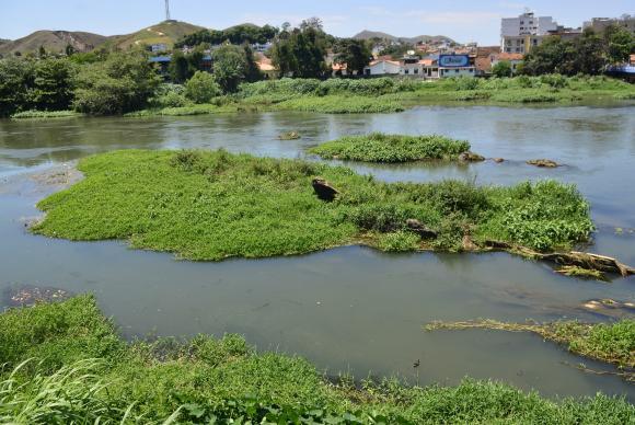Governo do Rio planeja o reflorestamento das margens do Paraíba do Sul, um dos mananciais que abastecem o estado (Foto: Agência Brasil/Tomaz Silva)