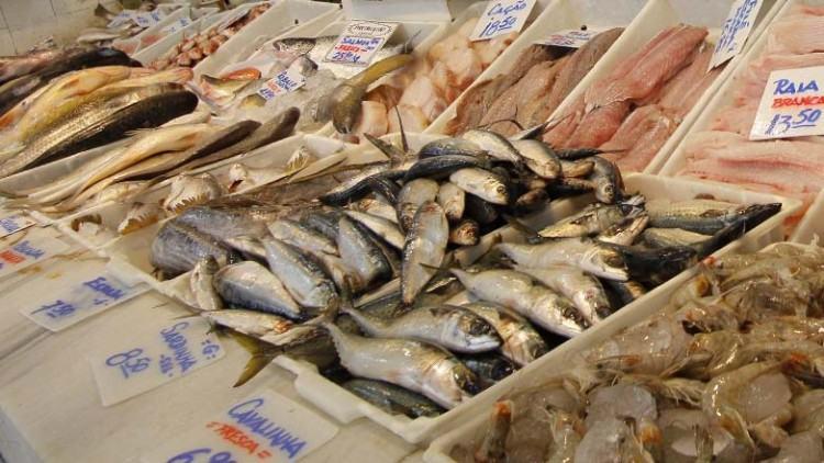 Repare na pele – O peixe bom tem a sua pele brilhante, ao contrário do ruim, que tem sua superfície opaca e sem vida. (Foto: Antônio Basílio/PMSJC)