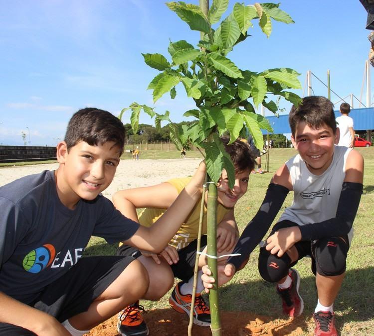 Alunos plantam mudas de árvores ao lado do Sedes. (Foto: Divulgação/PMT)