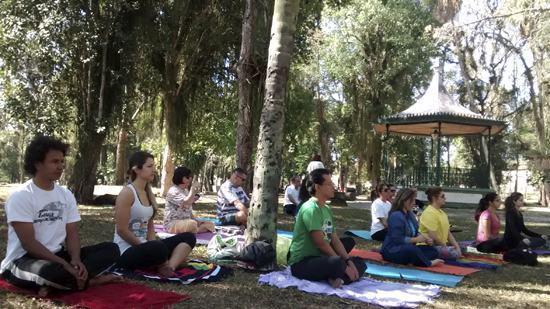 As aulas de Yoga são realizadas duas vezes ao mês, no Bosque da Princesa. (Foto: Divulgação/PMP)