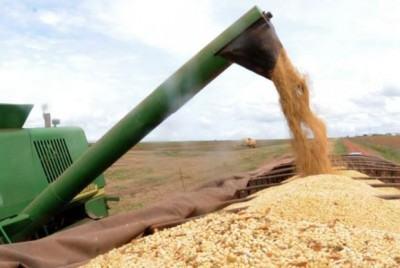 Houve um crescimento de 7,06 milhões de toneladas de grãos em relação à safra anterior. (Arquivo/Agência Brasil)