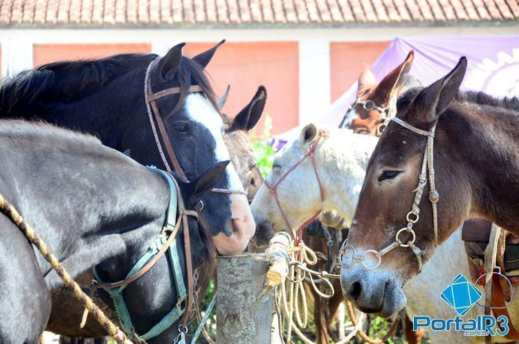 Evento aconteceu entre os dias 1º e 3 de maio, na Fazenda Coruputuba. (Foto: Luis Claudio Antunes/PortalR3)