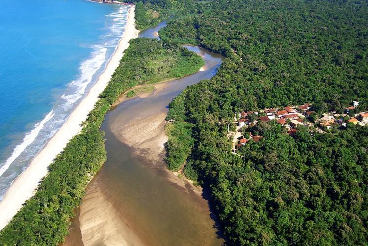 Ubatuba detém uma das maiores áreas contínuas do bioma Mata Atlântica do país. (Foto: Divulgação/PMU)