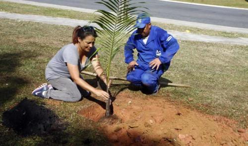 São José: Comunidade e alunos da Fundhas participam de plantio de mudas